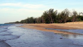 Casuarina free beach