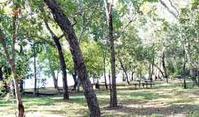 Manton Dam Picnic Area