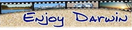 logo for enjoy-darwin.com