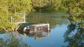 Crocodile trap in Rapid Creek