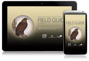 Northern territory Field Guide