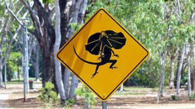 Road sign at Anula school  (editor)