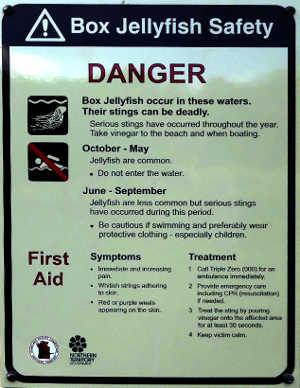 Box Jellyfish warning sign