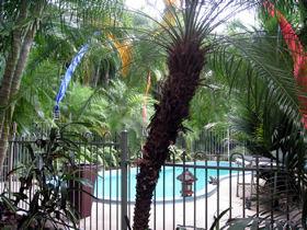 Enjoy breakfast by the pool