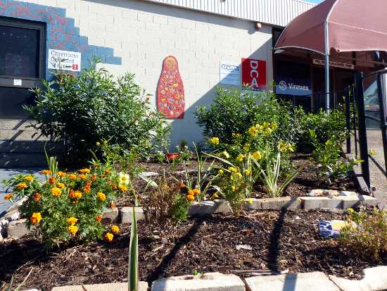 Community Garden at Theatre entrance