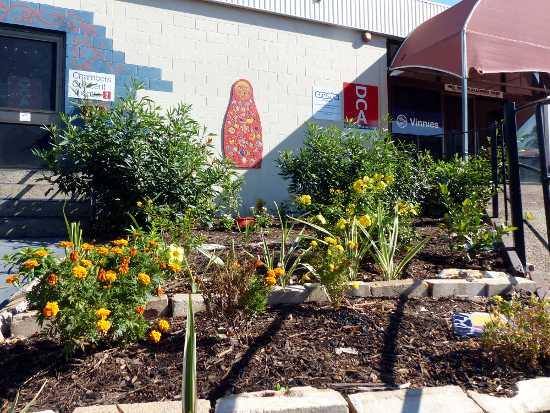 Community Garden at Theatre entrance