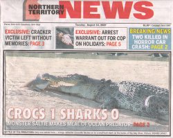 crocodile eats shark