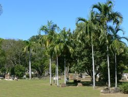 Darwin General Cemetery