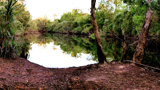 Finniss River Billabong