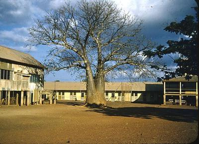 Old Darwin Primary School