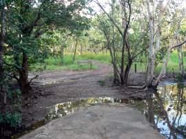 woodlands behind hospital