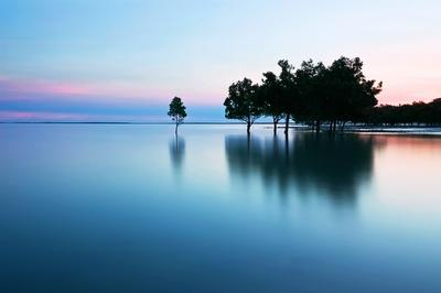 Calmly over Fannie Bay