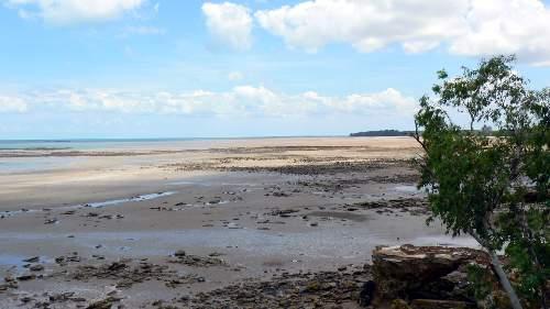 Casuarina Beach Low Tide