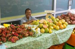 Garden Fresh Tropical Fruit
