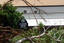 tree falls near Community Centre