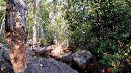 rocky pools