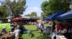 Rozella Festival