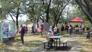 Seabreeze Festival Jetty Art Space