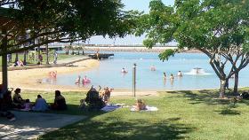 Shady City Beach