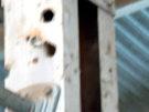 Bullet holes in hangar structure