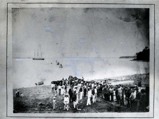 landing the cable Darwin 1871