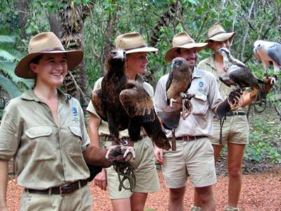Spectacular Raptors and their Handlers