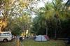 Shady campsites for the campers