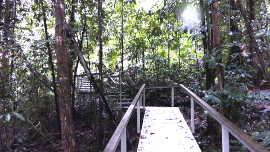 wangi stairs