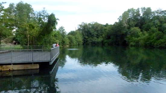 Viewing platform on the picturesque Howard Springs pool