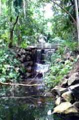 Gardens Waterfalls
