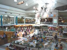 Casuarina Eatery