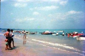 popular Darwin beach
