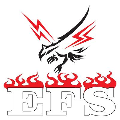 Electrical and Fire Services Pty Ltd