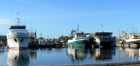 Frances Bay Boats