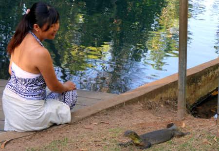 Visitor and water monitor at Howard Springs