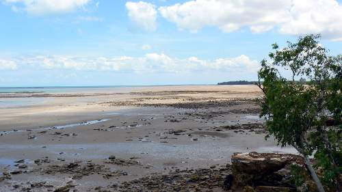 Casuarina Beach Low Tide