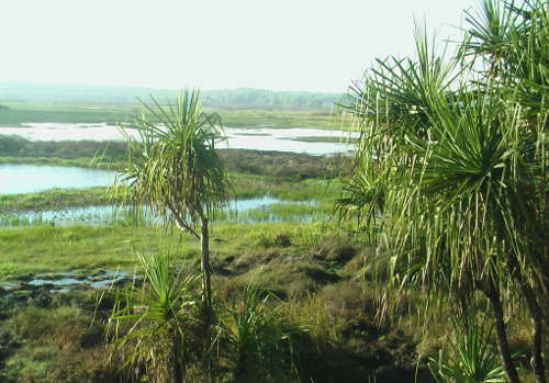 Outback Flood Plains