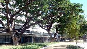 Raintree Park, Cnr Knuckey St & Mall