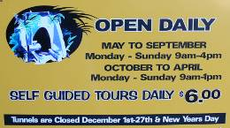 Tunnel Opening Times & Cost