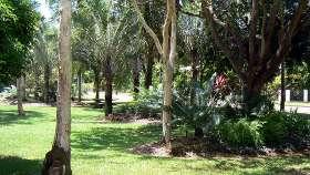 A small Wanguri Public Garden